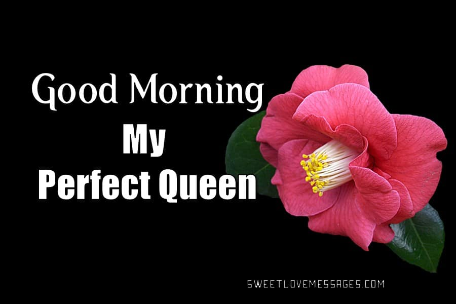 Good Morning Love Letter to My Queen