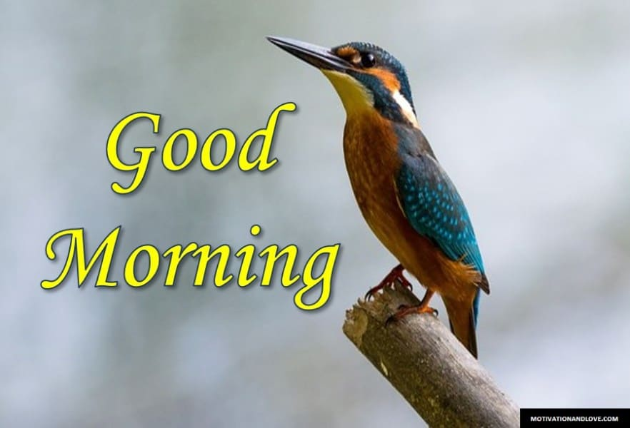 Good Morning Sms for Love