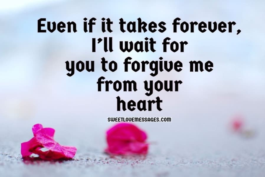 I'm Sorry Babe Quotes from the Heart