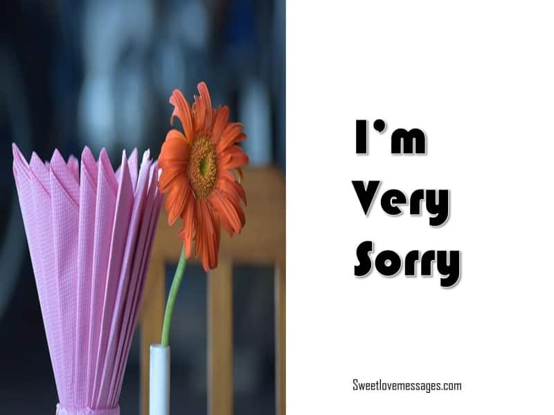 Sweet Sorry Message