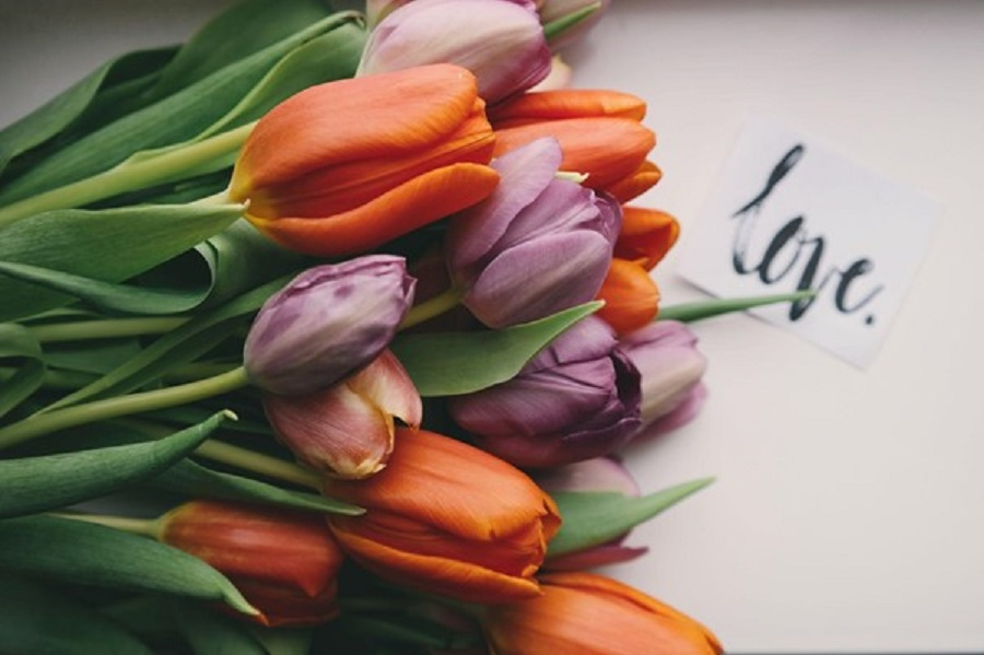Tips for Writing the Perfect Love Poem for Your Lover